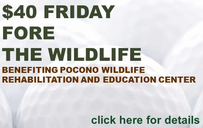 $40 Friday Fore the Wildlife