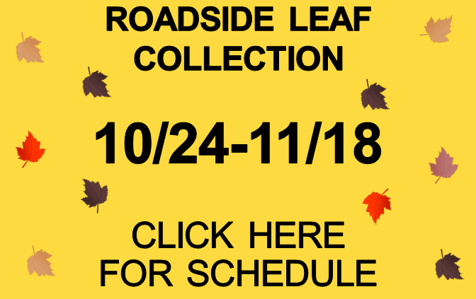 Fall Leaf Collection Has Begun